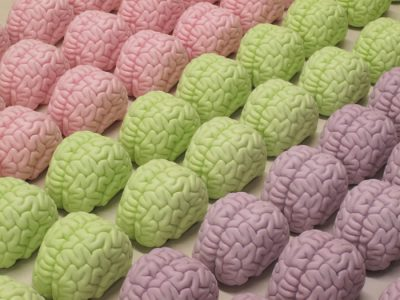 Brain Soap, large group, all types