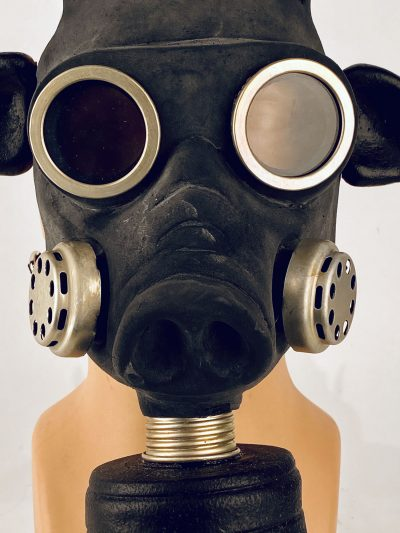 Pig - gas mask, closeup