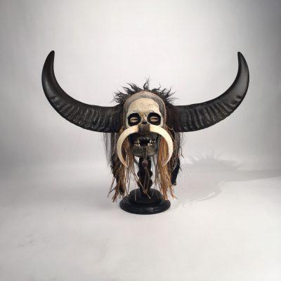 Naga - Decorated Skull